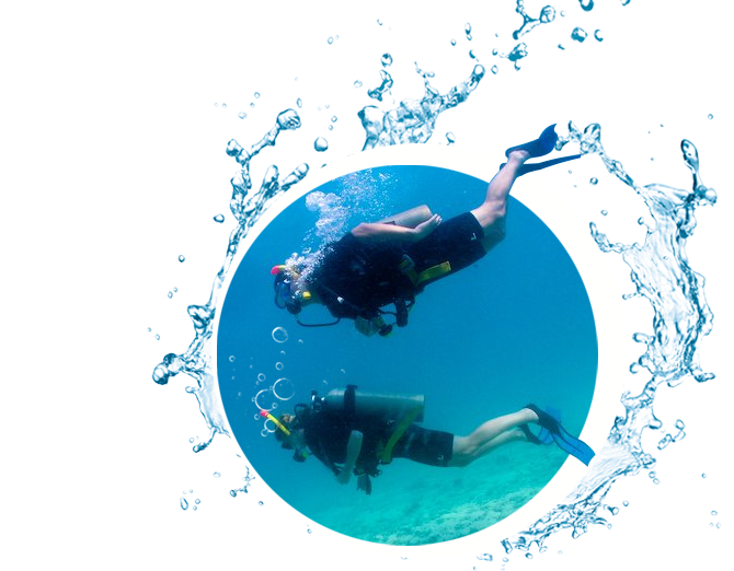 Not Enough Time For The Open Water Course Become A Scuba Diver